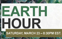 https://www.earthhour.org/celebrate-the-hour