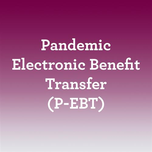 Pandemic Electronic Benefit Transfer (P-EBT)