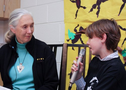 dr  jane goodall during
