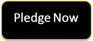 Pledge Now Button with Hyperlink