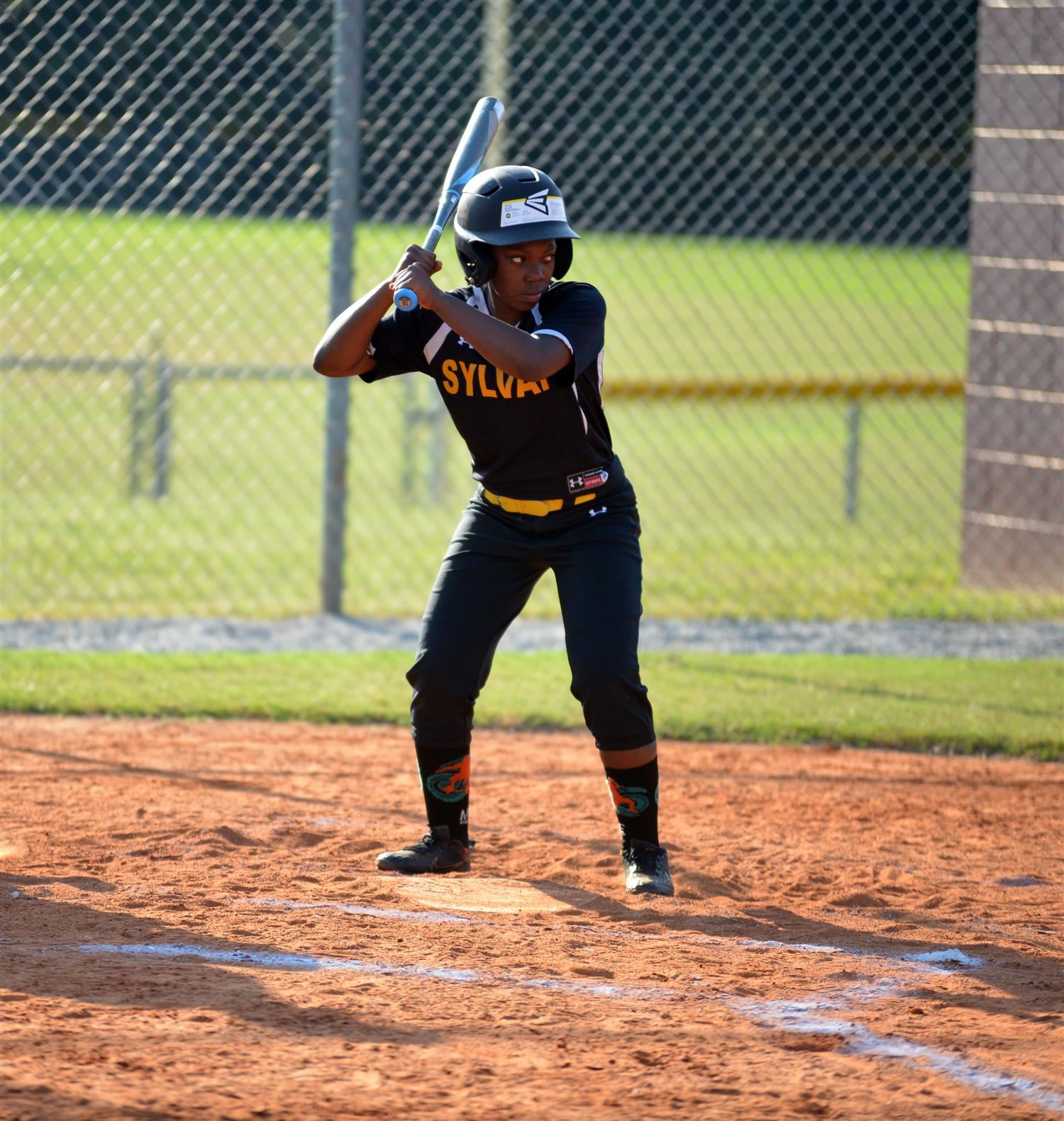 Golden Bears Softball Makes it to Playoff Round
