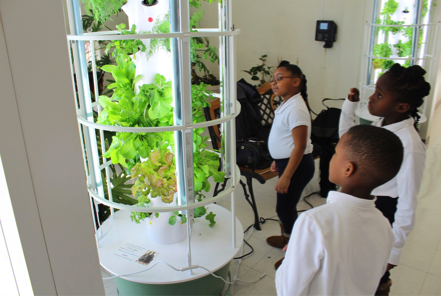 Tower Garden Serves Students Sustainability Lesson